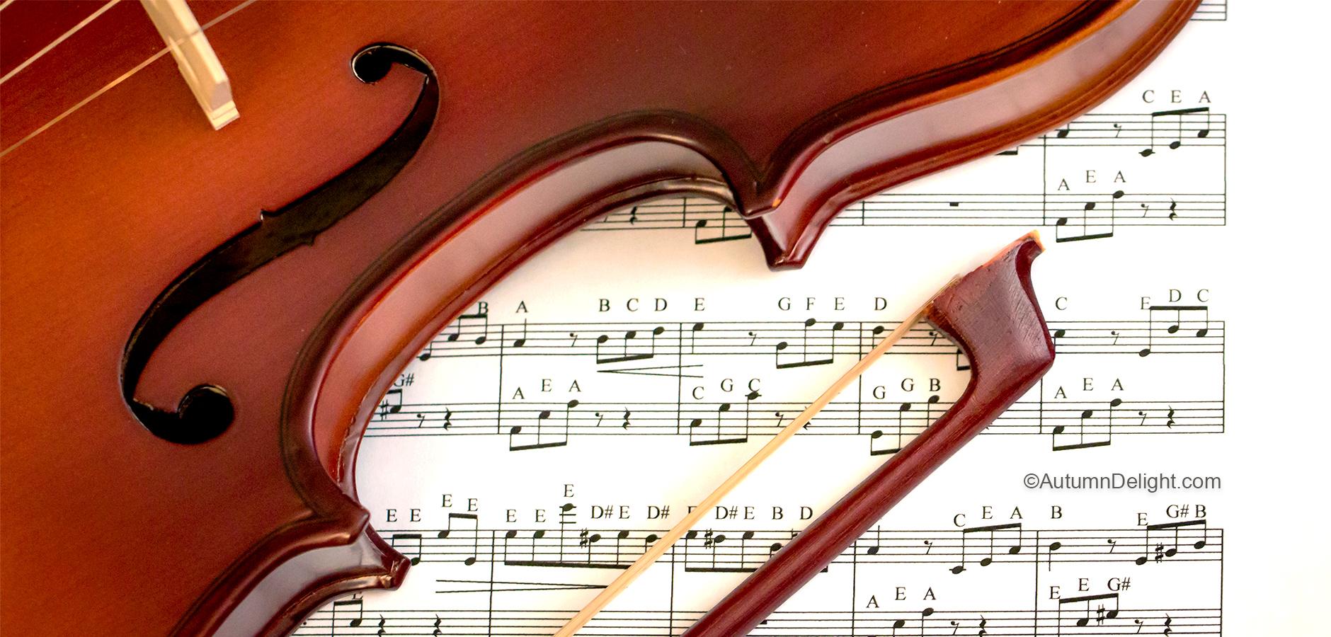 Violin - In good hands